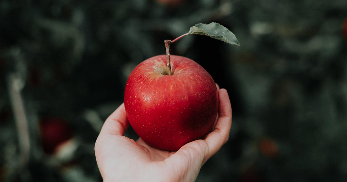ICTのCMでリンゴを持つ女の子