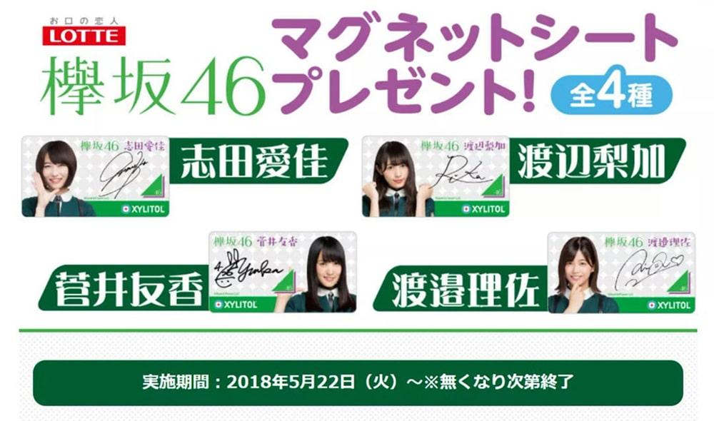 HKT48・欅坂(櫻坂)46_マグネットシート